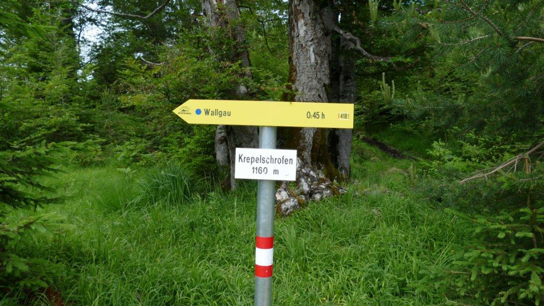 2019-07-03-Entspannungsliegen-Wallgau (6)