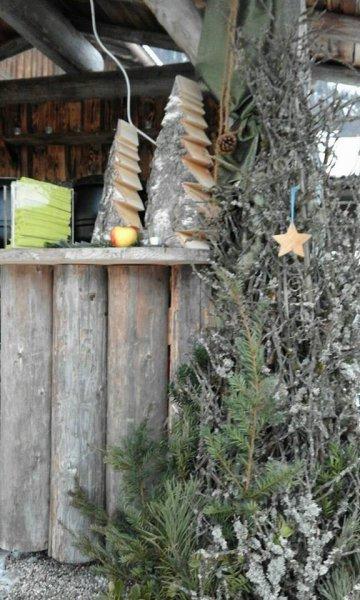 2015-11-29_Adventssingen-Wallgau_ (9)