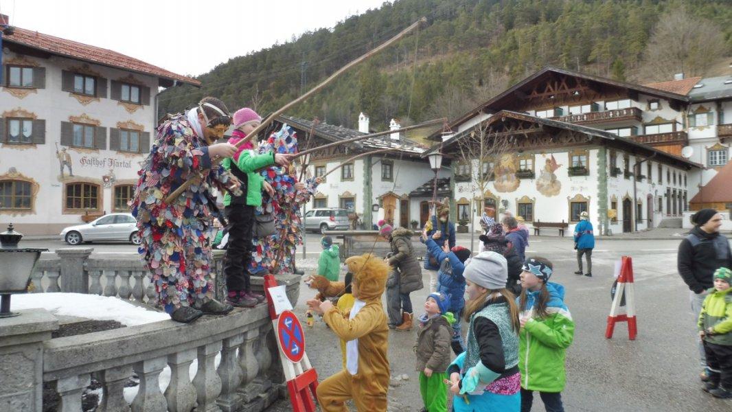 Festival der Tiere Wallgau 08.02.2016 (56)